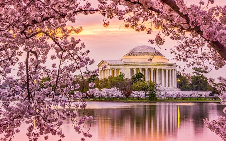primavera en estados unidos